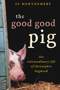 The Good Good Pig Cover