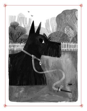 Molly Illustration