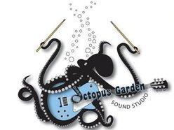 1325642568_octopus
