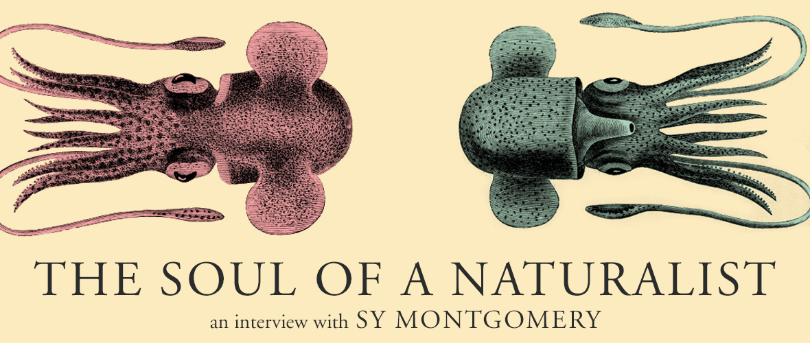 The Soul of a Naturalist
