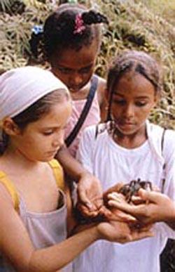 kids taratula