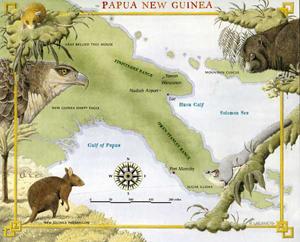 paua new guinea small