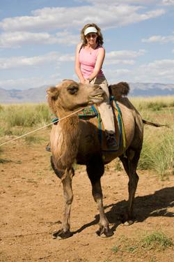 Sy on Camel