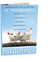 Birdology: Adventures With A Pack of Hens, A Peck of Pigeons, Cantankerous Crows, Fierce Falcons, Hip Hop Parrots, Baby Hummingbirds, and One Murderously Big Living Dinosaur